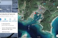 Screenshot_20200327-115128_Maps