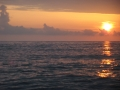 Wal mit Fontäne im Sonnenuntergang