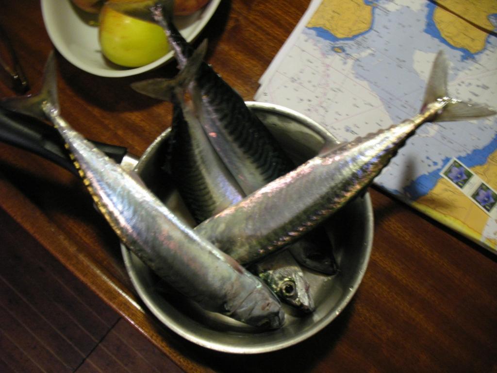 Jeden Tag Fisch
